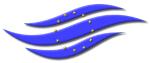logo_dds